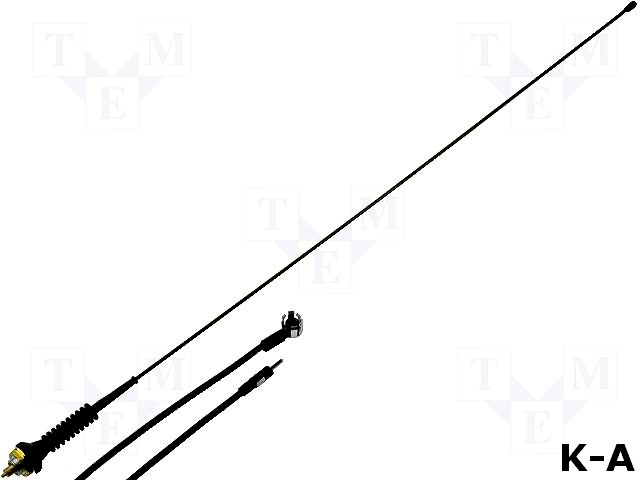 ANT-ASP-06.1