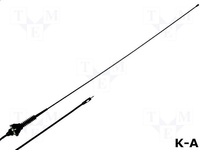 ANT-ASP-17