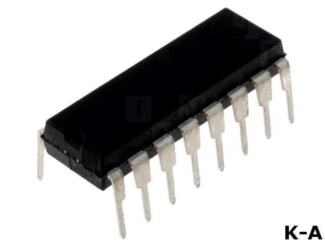 DS1305+
