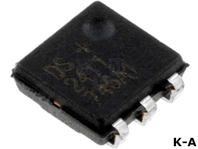 DS2411P+